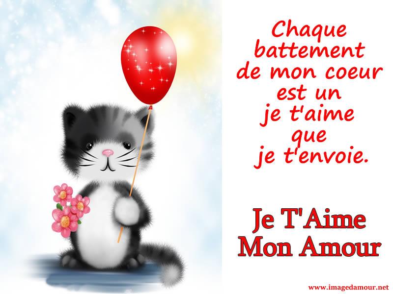 Image Je Taime Gratuite Avec Doux Chat Et Phrase Damour
