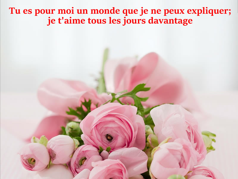 Photo d'amour Romantique
